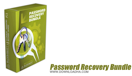Password Recovery Bundle 2012 2.10